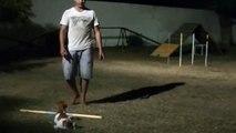 Agility Noturno EAOS Loop Jack Russel Terrier Adestramento Olivier Soulier Fortaleza CE