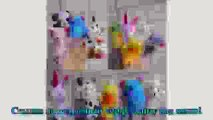 10PCS Animal Zoo Farm Finger Puppets Plush Cl