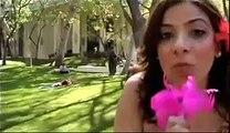 Celebrity Baby Trivia: USC Trojan Condoms vs UCLA Bruin Beers (ChismeTime.com)