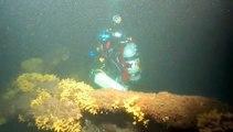 """Buceo en la Esmeralda 2009 Kitzing Malfanti y Rojas.m4v / Wreck Diving in """"Esmeralda"""" ship"""