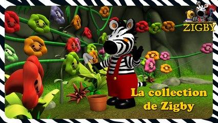 Zigby - La collection de Zigby  (EP. 32)