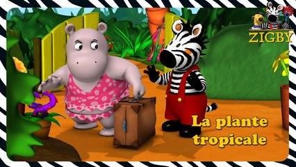 Zigby - La plante tropicale de Zigby  (EP. 3)