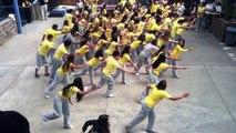 Colegio Lirima`s Flashmob 2011 Iquique Chile