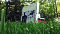 Compound bow archery target shooting