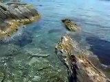 Neos Marmaras, Paradisos Beach