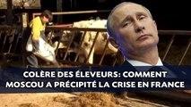 Colère des éleveurs: Comment la Russie a précipité la crise en France
