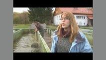 Angeln in Ulm, um Ulm und Ulm herum: Sterlet in der Donau