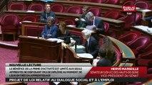 Projet de loi relatif au dialogue social et à l'emploi - En séance