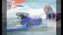 Surfing Dog Surf A Thon 2014 Surf Dog Helen Woodward Contest Best of Surf