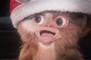 Bande-annonce : Gremlins - VF (2)