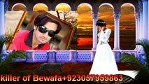 Tujhe Na Dekhu To  Romantic Song kumar sanu - alka yagnik((( Hafeez khan killer of Bewafa )))
