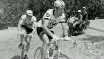 Cyclisme - TDF 2015 - C'est mon tour : 1975, Thévenet croque le Cannibale