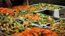 Start a Catering Business - Learn How to Cater - Catering Toolbox