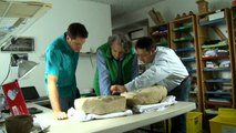 Ancient Mayan artefacts uncovered in Guatemala