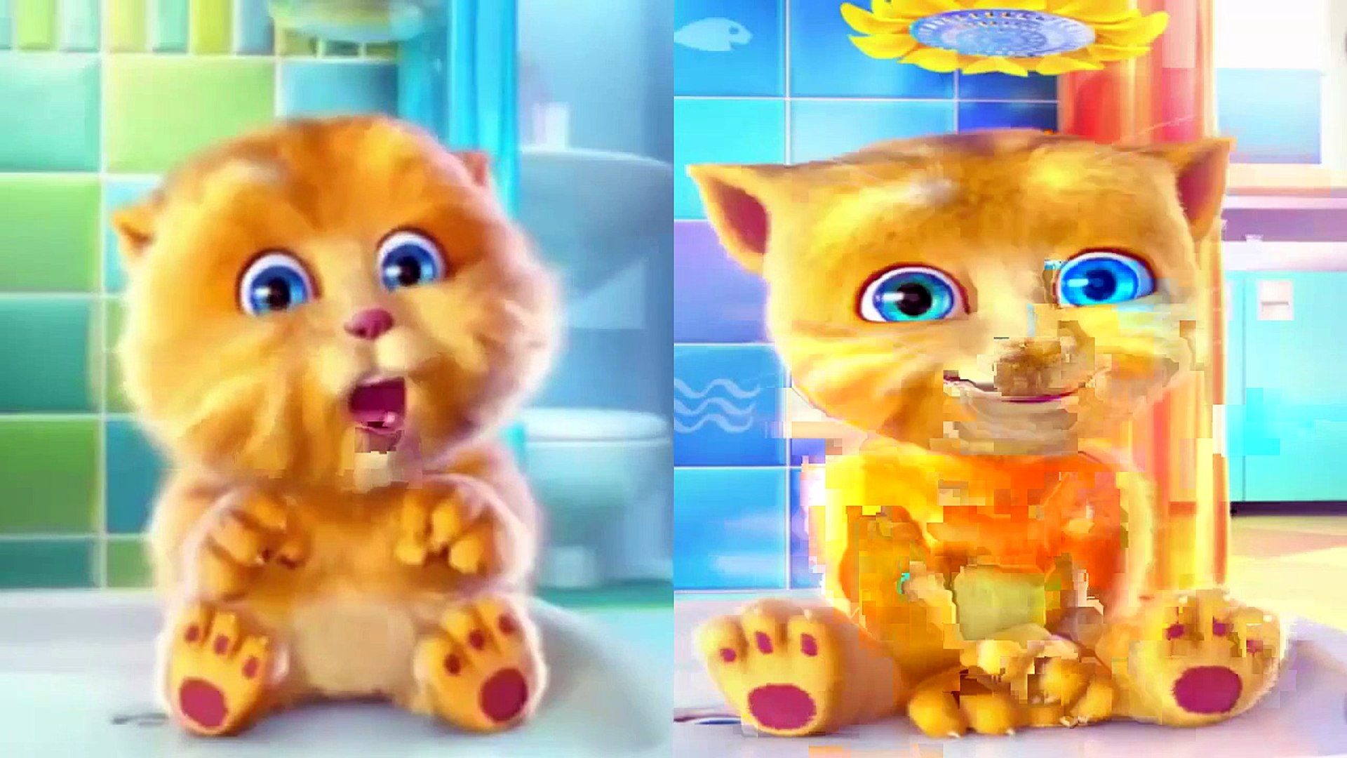 053 ABC song Funny Cat Talking Ginger ABC song for baby Kids song
