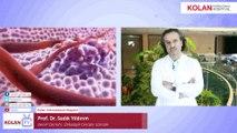 En Sık Görülen Kanser Çeşitleri Nelerdir? - Prof.Dr.Sadık Yıldırım