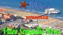 Vivere Senigallia News