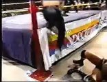 Thrillseekers (Jericho, Lance Storm) vs Heavenly Bodies