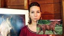 Tag - Presente nous ton cheval (Axelle - Coline Horse Riding)