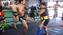 30 coups de pied en 15 secondes en Muay Thai