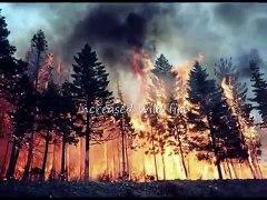 Global Dimming Global Warming