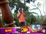 Swathi Chinukulu 24-07-2015 | E tv Swathi Chinukulu 24-07-2015 | Etv Telugu Episode Swathi Chinukulu 24-July-2015 Serial