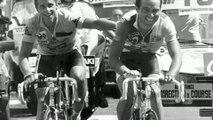 Cyclisme - Tour de France - C'est mon Tour : 1986, LeMond et Hinault confisquent le Tour