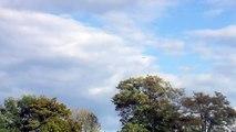 hélico SAMU 68 approach + landing attérissage Agusta A109