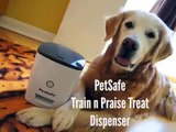 PetSafe Train n Praise Treat Dispenser