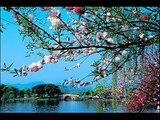 Love Always Finds A Reason - Elsa & Glen Medeiros