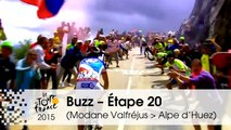 Buzz du jour / Buzz of the day - Étape 20 (Modane Valfréjus > Alpe d'Huez) - Tour de France 2015