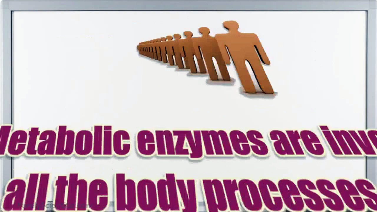 Probiotics And Digestive Enzymes: Learning The Different Types Of Enzymes In Our System