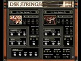 DSK STRINGS BY DSK MUSIC