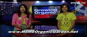 How to Create & Manage an Organic Garden : Making Organic Compost & Humates for Organic Gardens