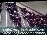 continuous conveyor belt fryer potato chips vegetables tortilla corn chips snack pellet