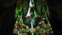 Merce Festival Sagrada Familia Light show Barcelona
