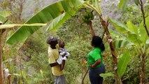 OSAPO - a vision of primary health care in rural Haiti