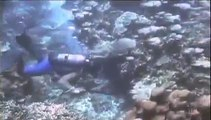 Undersea UFO Probe Filmed At Bermuda Islands
