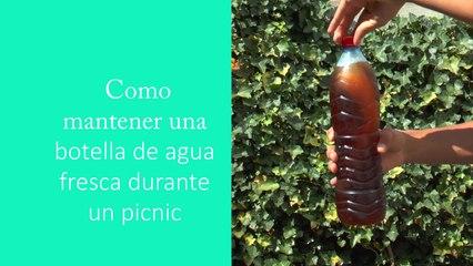 Como mantener una botella de agua fresca durante un picnic