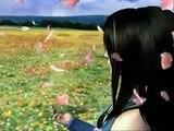 Kingdom Hearts, Final Fantasy 8-10, Shadow Hearts mv