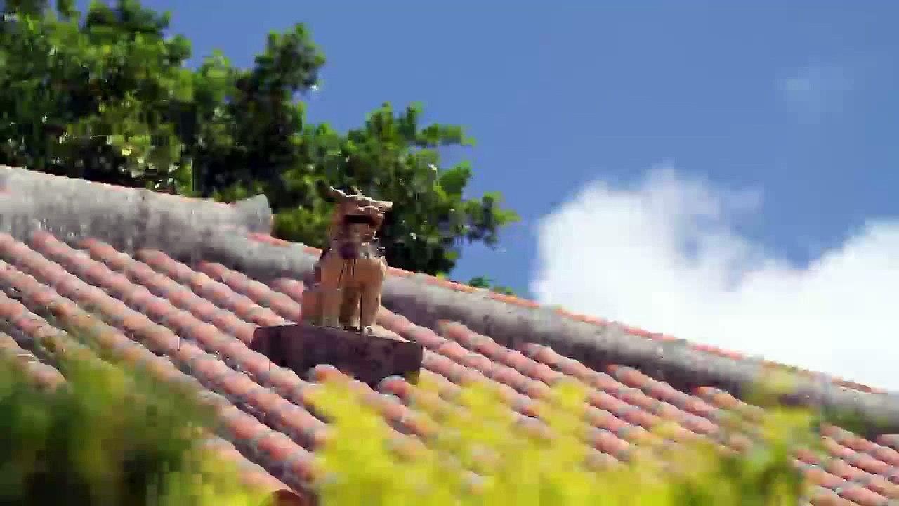 Okinawa Culture