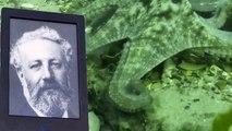 Ice Bucket Challenge des écrivains : Jules Verne