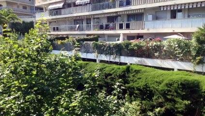 A vendre - Appartement - Nice (06100) - 3 pièces - 81m²