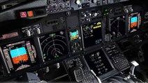 FSX Flight Simulator X HD - PMDG 737NGX Full Flight Vienna to Nice Côte d'Azur