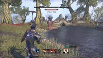 The Elder Scrolls Online: Tamriel Unlimited werewolf?