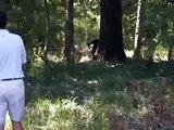 Black Bear @ Black Bear Golf Course Delhi, LA