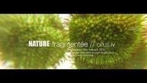 Nature fragmentée OPUS IV © Eric Imbault 2015