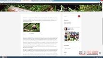 17.Wordpress Telugu Tutorials - How to create Website in Wordpress Part 17. Web Master Tools