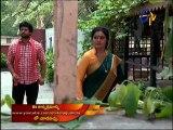 Swathi Chinukulu 28-07-2015 | E tv Swathi Chinukulu 28-07-2015 | Etv Telugu Episode Swathi Chinukulu 28-July-2015 Serial