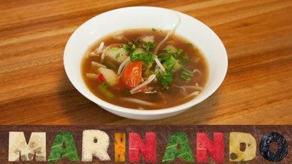 Sopa Vietnamita Agripicante